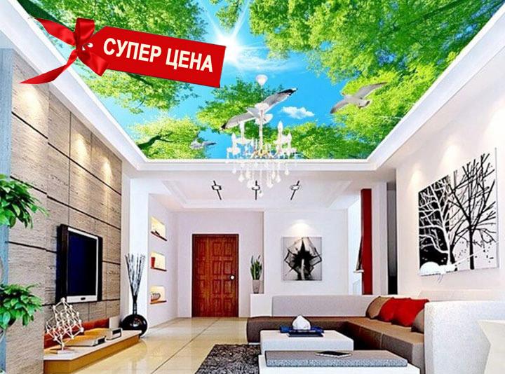 Потолки с фотопечатью в Кишиневе