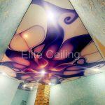 Потолок с фотопечатью в зале